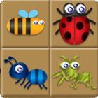 Jogo Bug Box