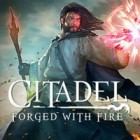 Jogo Citadel: Forged with Fire