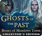 Jogo Ghosts of the Past: Bones of Meadows Town Collector's Edition