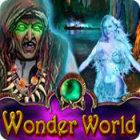 Jogo Wonder World